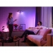 Philips Hue Wit & Color Ambiance 2-Pack GU10